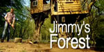Jimmys_Forest